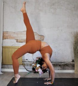 New Gold Soul! VACKRALIV YOGA SEAMLESS PERFECT FIT RIBBED KIT, rust